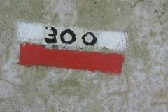 DSCN4054